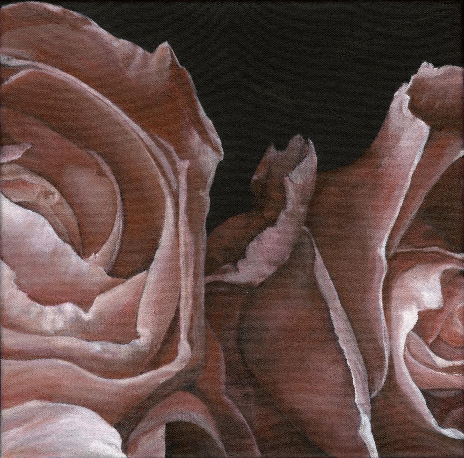 Rose II.